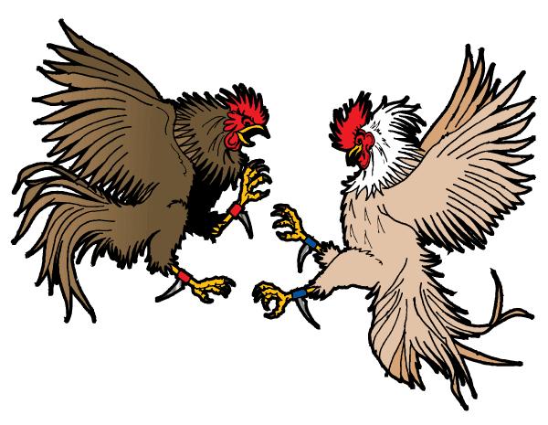 Daftar Agen S128 Judi Sabung Ayam Resmi